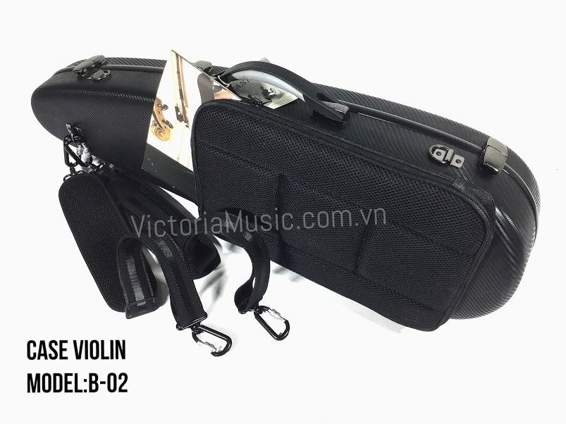 case vioiln b-02